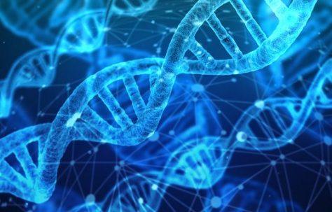 DNA Project – FAQ
